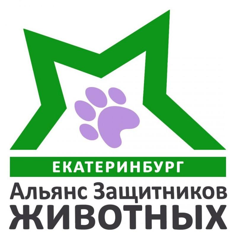 Создан Альянс Защитников Животных Екатеринбурга!
