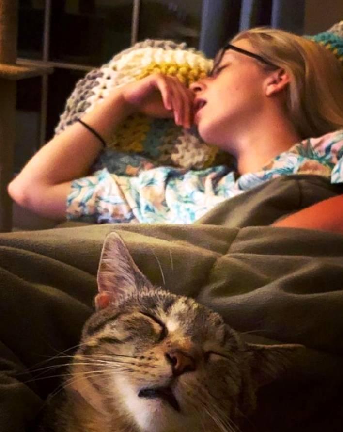 Двое из ларца или почему кошки похожи на своих хозяев