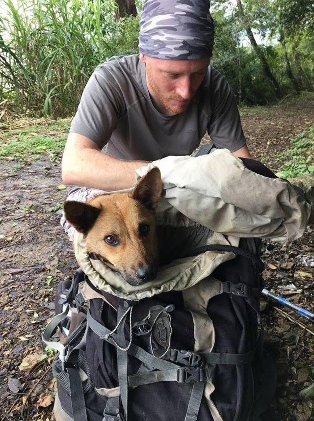 Ради спасения собаки они 12 часов шли по горам
