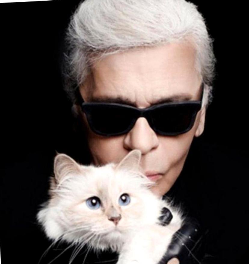 Усатая наследница многомиллионного состояния Лагерфельда или роскошная жизнь кошки Шупетт