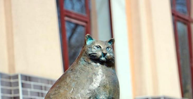 """Усатые """"жертвы Макдональдса"""" или самые толстые кошки"""