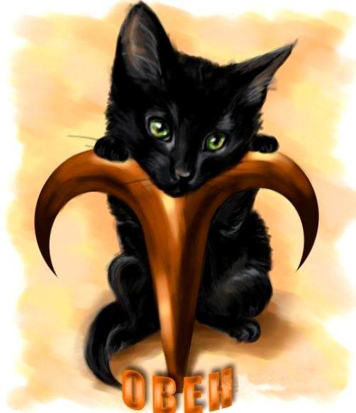 Страж на границе миров: как цвет шерсти в сочетании со знаком Зодиака влияет на магическую силу вашей кошки ЧАСТЬ 2