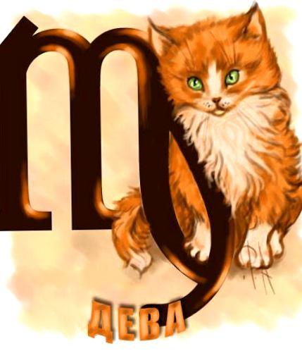 Znalezione obrazy dla zapytania: кот-дева