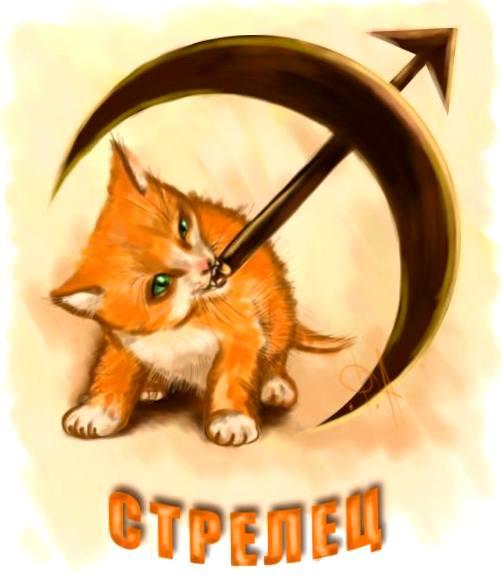 Znalezione obrazy dla zapytania: кот-стрелец