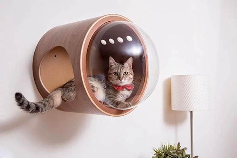 cat-beds-08.jpg