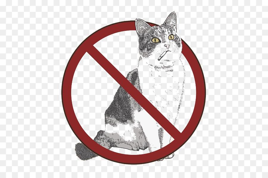 Добро пожаловать или кошкам вход воспрещен: где на нашей планете не рады пушистым непоседам