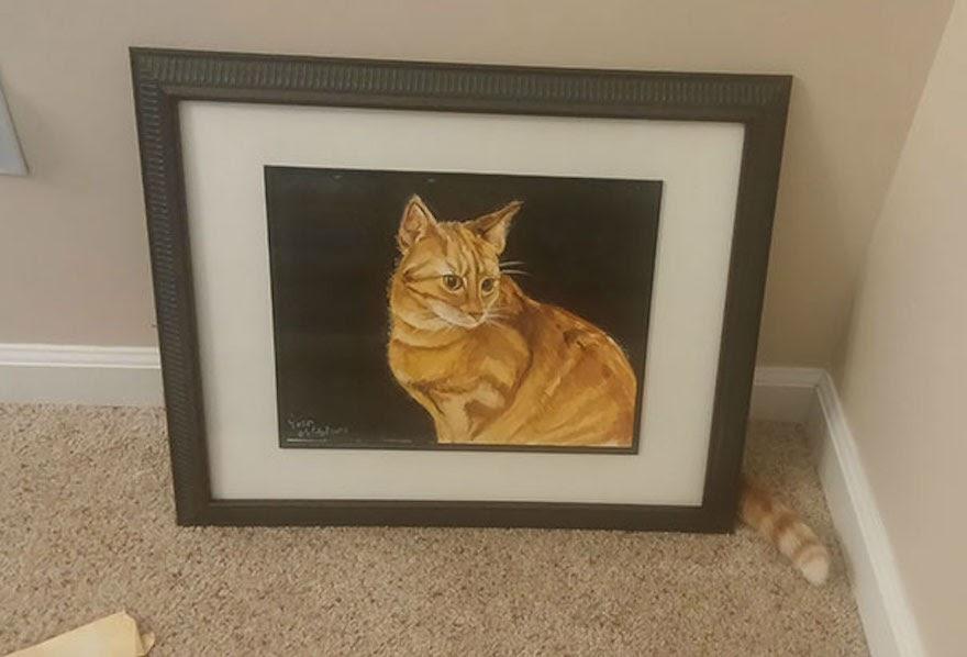Найди кота: справятся только самые зоркие! Фотоподборка-игра для внимательных и усидчивых.