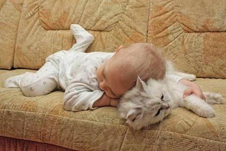 cat-and-baby-2.jpg
