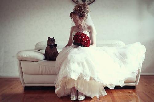 catwedding12.jpg
