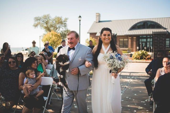 cat-wedding.jpg