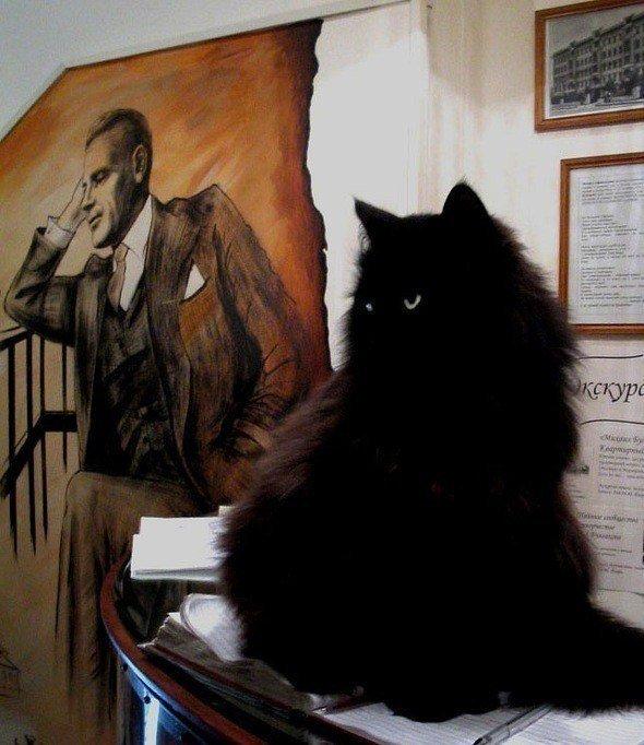 Черный кот Бегемот, музей и страсти по Булгакову: всем любителям интересного посвящается!