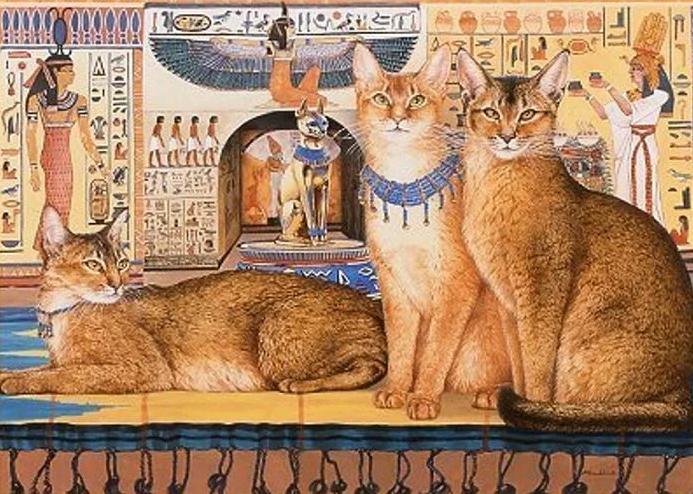 Как жили раньше кошки в других странах: немного интересных исторических фактов