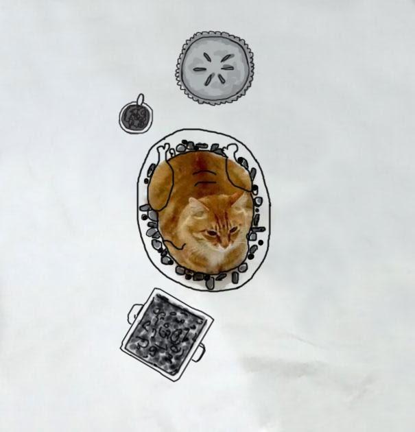 ryzhij-kot-i-ego-priklyucheniya-v-risunkah-2.jpg