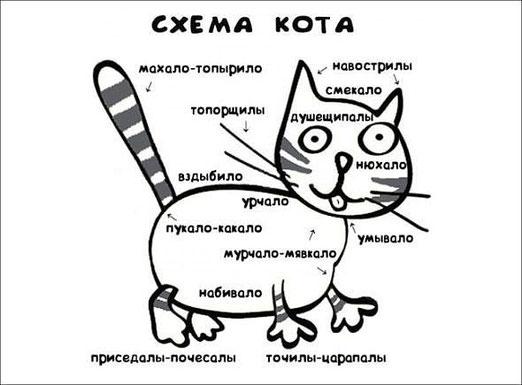 Махало-топырило или стабилизатор равновесия. Принципиальные схемы котов. Фотоподборка