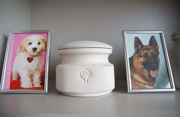 Кремация и утилизация домашних животных в Нижнем Новгороде: кошек, собак | Цены на ритуальные услуги ветеринарной клиники НЕОТЛОЖКА
